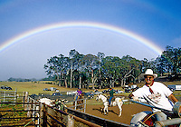 A rainbow over the roping arena in Olinda, Maui