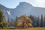 Half Dome in Yosemite National Park, CA, USA