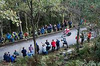 Edvald Boasson Hagen (NOR/Dimension Data) up Mount Fløyen<br /> <br /> Men Elite Individual Time Trial<br /> <br /> UCI 2017 Road World Championships - Bergen/Norway