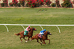 DEL MAR, CA  JULY 31: #8 Mackinnon, a son of American Pharaoh, ridden by Juan Hernandez breaks his maiden on July 31, 2021 at Del MarThoroughbred Club in Del Mar, CA. (Photo by Casey Phillips/Eclipse Sportswire/CSM)