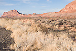 The Gap, Arizona; Highway 89 between Cameron and Page, tumbleweed and scrub brush contrasted against red sandstone cliffs and blue sky