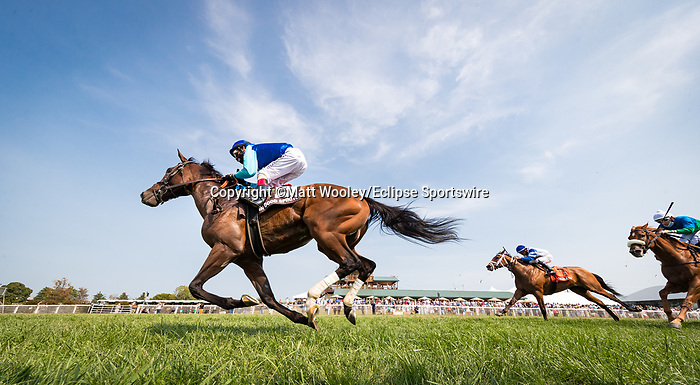 In Good Spirits (Ghostzapper) wins the Keeneland Mint Ladies Sprint (G3) at Kentucky Downs on 9.11.21. John Velazquez up, Al Stall Trainer, Bal Mar Equine owner.