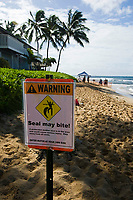 This sign warns tourists of possible dangers with Hawaiian monk seals, Neomonachus schauinslandi. Underwater encounters with monk seals, (endemic and endangered) are few and far between. Kauai, Hawaii.