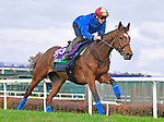 October 31, 2018 : Enable, trained by John Gosden, gallops with Frankie Dettori in preparation for the Breeders' Cup Turf at Churchill Downs on October 31, 2018 in Louisville, KY. Jessica Morgan/ESW/CSM