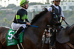 """DEL MAR, CA  JULY 28:  #5 Ransom the Moon, ridden by Flavien Prat, in the post parade of the Bing Crosby Stakes (Grade l) Breeders' Cup """"Win and You're In Sprint Division"""" on July 28, 2018 at  Del Mar Thoroughbred Club in Del Mar, CA. (Photo by Casey Phillips/Eclipse Sportswire/Getty Images)"""