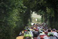 peloton up the Gulperberg (450m/9.3%)<br /> <br /> stage 3: Buchten - Buchten (NLD/210km)<br /> 30th Ster ZLM Toer 2016