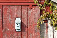 Birdhouse mounted on rustic barn.