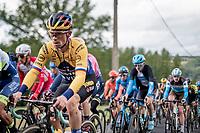 Primoz Roglic (SVN/Jumbo-Visma) up the Côte de Stockeu <br /> <br /> 106th Liège-Bastogne-Liège 2020 (1.UWT)<br /> 1 day race from Liège to Liège (257km)<br /> <br /> ©kramon