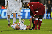 Roberto Firmino of Liverpool (R) checks on Mike van der Hoorn of Swansea City who lays on the ground during the Premier League match between Swansea City and Liverpool at The Liberty Stadium, Swansea, Wales, UK. Monday 22 January 2018