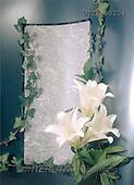 Helga, SYMPATHY, photos, 3 white iris, paper(DTTH80204,#T#) Beileid, condolación