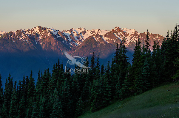 Mount Carrie and part of Bailey Mountain Range in Olympic National Park, WA.  Summer morning.  Photo taken from Hurricane Ridge/Hill Road.