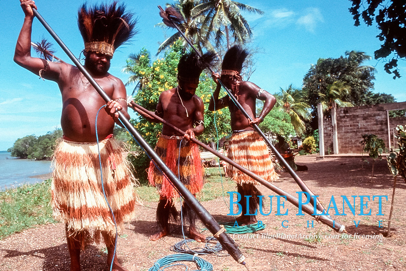 Aboriginals of Boigu Island, Torres Straits, Australia, perform traditional dance which re-enacts dugong hunt with harpoons.