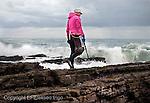 Fecha: 04-12-2014. LUGO, Rinlo.- Ribadeo.- Percebeiros en Rinlo. En la imagen una percebeira busca el preciado molusco, que vive agarrado a las rocas donde las rompientes de las olas del mar pegan con mas fuerza.  Por la mañana temprano en la costa de Rinlo, aprovechando la marea baja. El dia 4 de Diciembre se abrió la veda, estos trabajadores del mar disponen de 60 días en todo el año para poder recoger un máximo de 5 kg de percebes diarios.