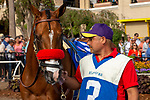 """DEL MAR, CA  JULY 28: #3 Secret Spice, ridden by Flavien Prat, in the paddock before the Clement L Hirsch Stakes (Grade 1) a Breeders' Cup """"Win and You're In"""" Distaff Division (Photo by Casey Phillips/Eclipse Sportswire/CSM)"""