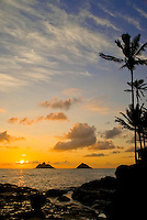 The Mokulua Islands and a stand of palms enrich this sunrise scene from Kailua beach.