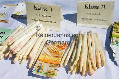 Deutschland, Bayern, Oberbayern, Muenchen: Informationsstand, weisser, Deutscher Spargel    Germany, Bavaria, Upper Bavaria, Munich: white asparagus, quality class