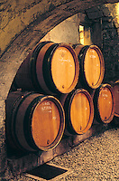 Europe/France/89/Yonne/ Chablis: Caves de l'Obédiencerie du Domaine Laroche - AOC Chablis