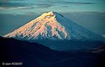 Amérique du Sud. Equateur. Trekking sur les volcans d'Equateur. Vue du Cotopaxi au lever du soleil (5897 m).South America. Ecuador. Cotopaxi summit at sun rise