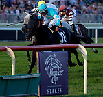 ARLINGTON HEIGHTS, IL - AUGUST 12:  Beach Patrol #10, ridden by Joel Rosario, wins the Arlington Million on Arlington Million Day at Arlington Park on August 12, 2017 in Arlington Heights, Illinois. (Photo by Jon Durr/Eclipse Sportswire/Getty Images)