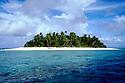 Faulopa in the Funifuti Archipelago of Tuvalu. Karie Henderson © 2001