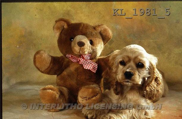 Interlitho, Alberto, ANIMALS, dogs, photos, shar pei, teddy(KL1981/5,#A#) Hunde, perros