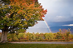 Fall foliage and a big rainbow, Sugar Hill, White Mountains, NH, USA