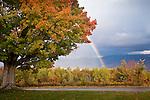 Fall foliage and a big rainbow, Sugar Hill, White Mountains, NH, USA