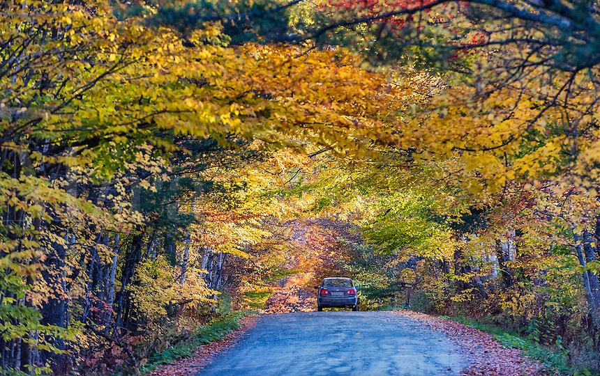 Autumn scenic,  Newbury, Vermont, USA.
