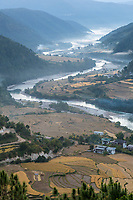 Punakha, Bhutan.  Morning Mist in the Mo River Valley.