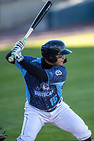 West Michigan Whitecaps designated hitter Eliezer Alfonzo (15) at bat against the Great Lakes Loons at LMCU Ballpark on May 11, 2021 in Comstock Park, Michigan. (Andrew Woolley/Four Seam Images)