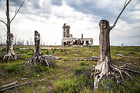 Since year 1920 Villa Epecuén was a peaceful and prosperous tourist village specially known for those seeking therapeutic salty waters . Located  500 kilometers from the capital city of Argentina, in 1985 a rare weather phenomena flooded the area destroying the dam and the wall protecting the town. People  was quickly evacuated  as the salty water covered the entire town. For 25 Epecuén disappeared . Recently the water over the town dried and the spectral, impressing ruins of Epecuen are visible.10/26/2014 - Epecuen, Buenos Aires, Argentina. Ruins of Epecuén, the argentinian town that drowned in 1985 and stayed underwater for 25 years.