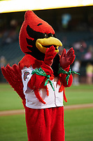 Memphis Redbirds Rockey the Rockin' Redbird during a game against the Round Rock Express on April 28, 2017 at AutoZone Park in Memphis, Tennessee.  Memphis defeated Round Rock 9-1.  (Mike Janes/Four Seam Images)