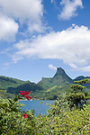 Moorea, French Polynesia; views of Cook's Bay from the home of the executive director of Gump Research Station, with Mount Mouaputa (830 m) in the background and red hybiscus flowers in the foreground , Copyright © Matthew Meier, matthewmeierphoto.com All Rights Reserved