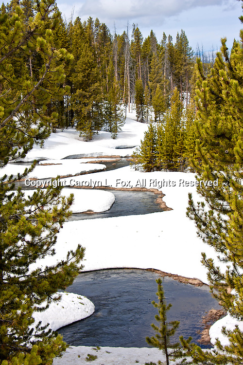 A river runs through a snowy field in Yellowstone National Park.