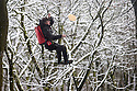 28/02/17<br /> <br /> Suspended from a 30ft high zipwire LiamMcCabe tosses a pancake surrounded by snow covered woodland at the Go Ape Tree Top Adventure in Buxton in the Derbyshire Peak District.<br /> <br />  <br /> All Rights Reserved F Stop Press Ltd. (0)1773 550665 www.fstoppress.com