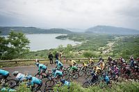 peloton (with Green Jersey Wout van Aert) up the Col de la Chambotte<br /> <br /> Stage 6: Saint-Vulbas to Saint-Michel-de-Maurienne (228km)<br /> 71st Critérium du Dauphiné 2019 (2.UWT)<br /> <br /> ©kramon