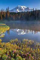 Morning at Mt. Rainier and Reflection lake