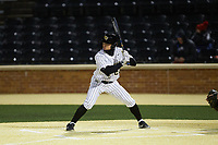 Derek Crum (20) of the Wake Forest Demon Deacons at bat against the Louisville Cardinals at David F. Couch Ballpark on March 6, 2020 in  Winston-Salem, North Carolina. The Cardinals defeated the Demon Deacons 4-1. (Brian Westerholt/Four Seam Images)