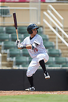 Nick Madrigal (10) of the Kannapolis Intimidators at bat against the Hagerstown Suns at Kannapolis Intimidators Stadium on July 17, 2018 in Kannapolis, North Carolina. The Intimidators defeated the Suns 10-9. (Brian Westerholt/Four Seam Images)