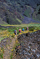 Group of five people hiking through Haleakala National park, Maui