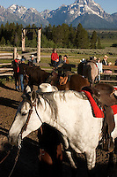 Guests preparing for a morning ride at Triangle X Dude Ranch in Grand Teton National Park