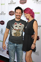 LOS ANGELES - AUG 1:  Hal Sparks at the A CATbaret! - A Celebrity Musical Celebration of the Alluring Feline at the Avalon on August 1, 2015 in Los Angeles, CA