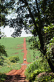 Fazenda Cagibi, Brazil. dirt road through a private ranch in Parana State; soya fields, trees, Bandeirante jeep.