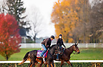 November 1, 2020: Dirty Dangle, trained by trainer Mark E. Casse, exercises in preparation for the Breeders' Cup Juvenile Turf Sprint at Keeneland Racetrack in Lexington, Kentucky on November 1, 2020. Alex Evers/Eclipse Sportswire/Breeders Cup /CSM