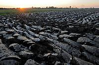 GERMANY, Schleswig-Holstein farming,  extreme wet soil after heavy rains / DEUTSCHLAND, Landwirtschaft, gepfluegtes Feld, schwerer nasser Boden nach Starkregen