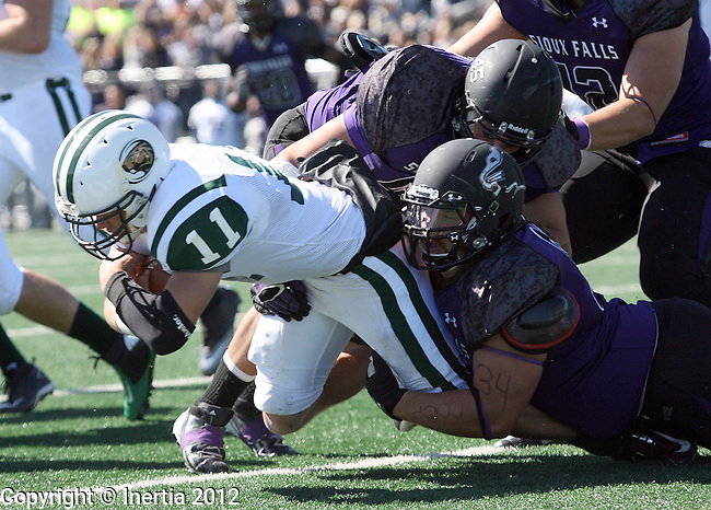 SIOUX FALLS, SD - SEPTEMBER 22:  Alex Hass #11 from Bemidji State is brought down by Jarrett Grabbe #97 from the University of Sioux Falls in the second quarter of their game Saturday afternoon at Bob Young Field. (Photo by Dave Eggen/Inertia)