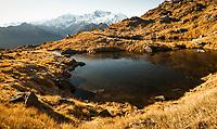 Morning light on alpine tarn with Southern Alps and its main highest peaks Aoraki Mount Cook, Mount Tasman and La Perouse, Westland Tai Poutini National Park, UNESCO World Heritage Area, West Coast, New Zealand, NZ