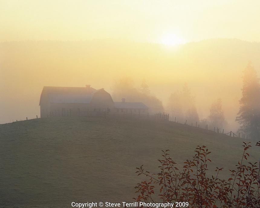 Barn in fog at sunrise in Hood River, Oregon