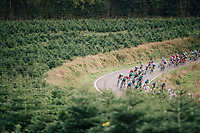 peloton<br /> <br /> 59th Grand Prix de Wallonie 2018 <br /> 1 Day Race from Blegny to Citadelle de Namur (BEL / 206km)