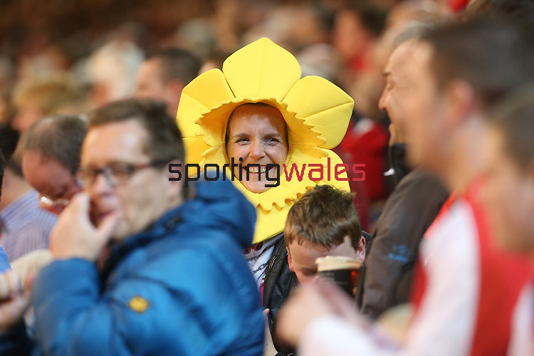 A patriotic Welsh rugby fan.<br /> RBS 6 Nations 2014<br /> Wales v Scotland<br /> Millennium Stadium<br /> <br /> 15.03.14<br /> <br /> ©Steve Pope-SPORTINGWALES